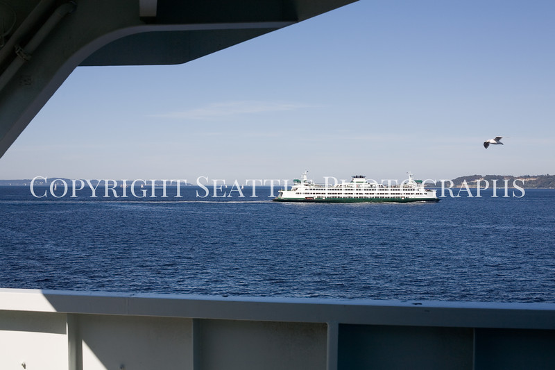 Ferry Boat Ride 121
