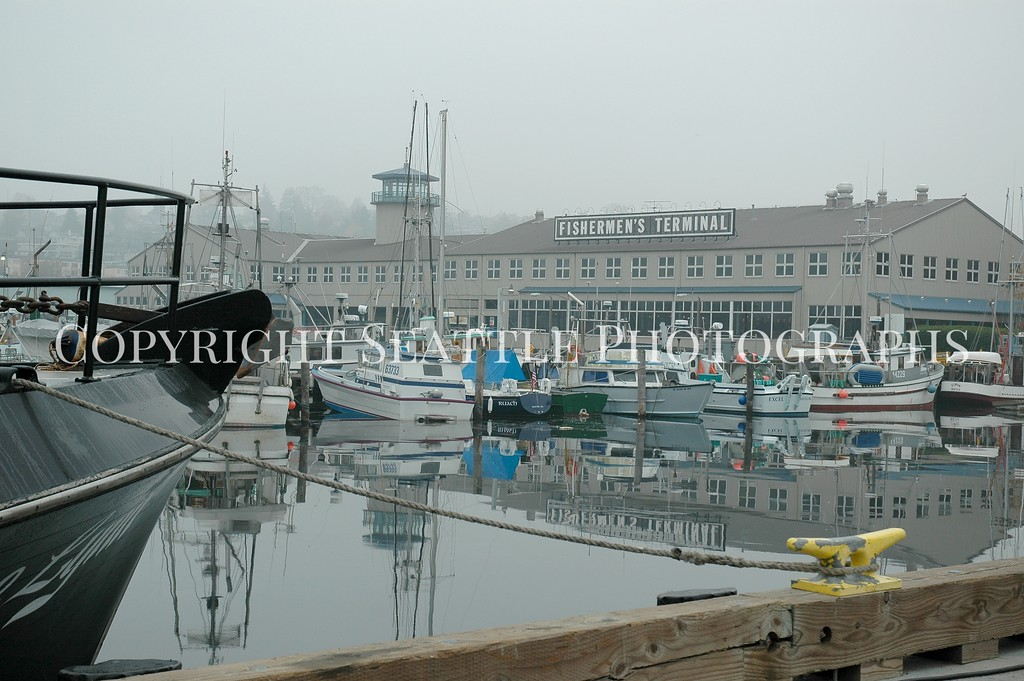 Fishermens Terminal 5