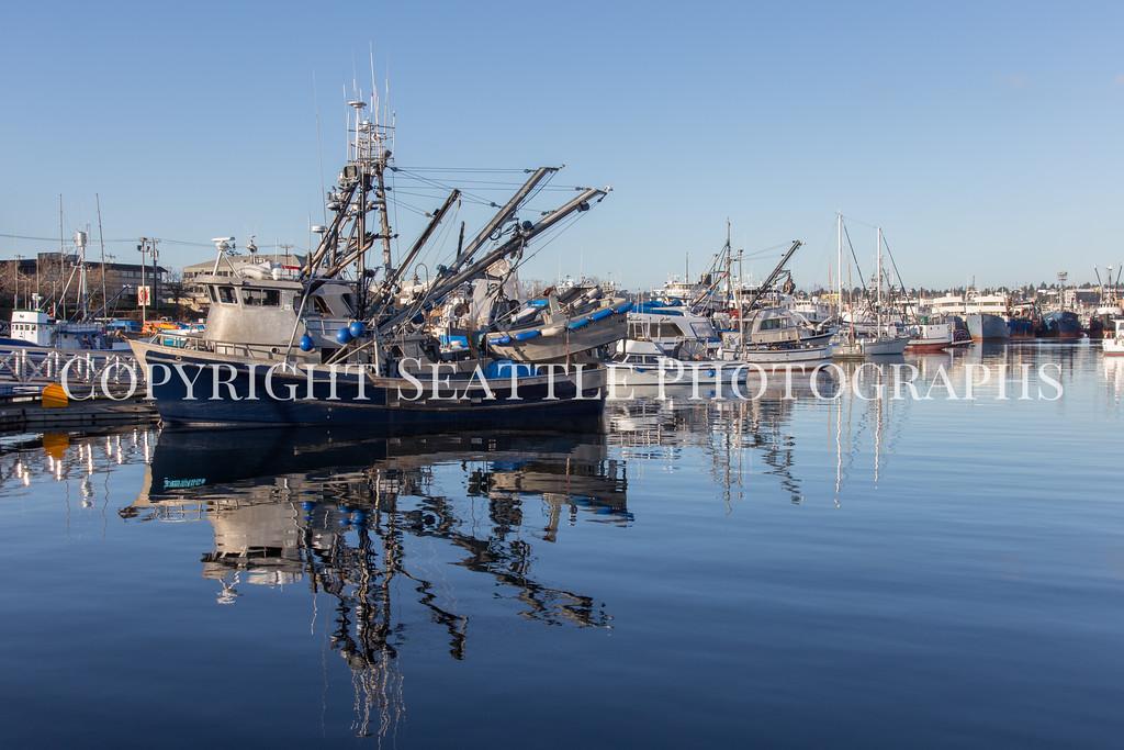 Fishermens Terminal 41