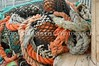 Fishermens Terminal Nets 11