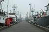 Fishermens Terminal 19
