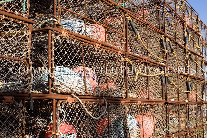 Fishermens Terminal Crab Traps 102
