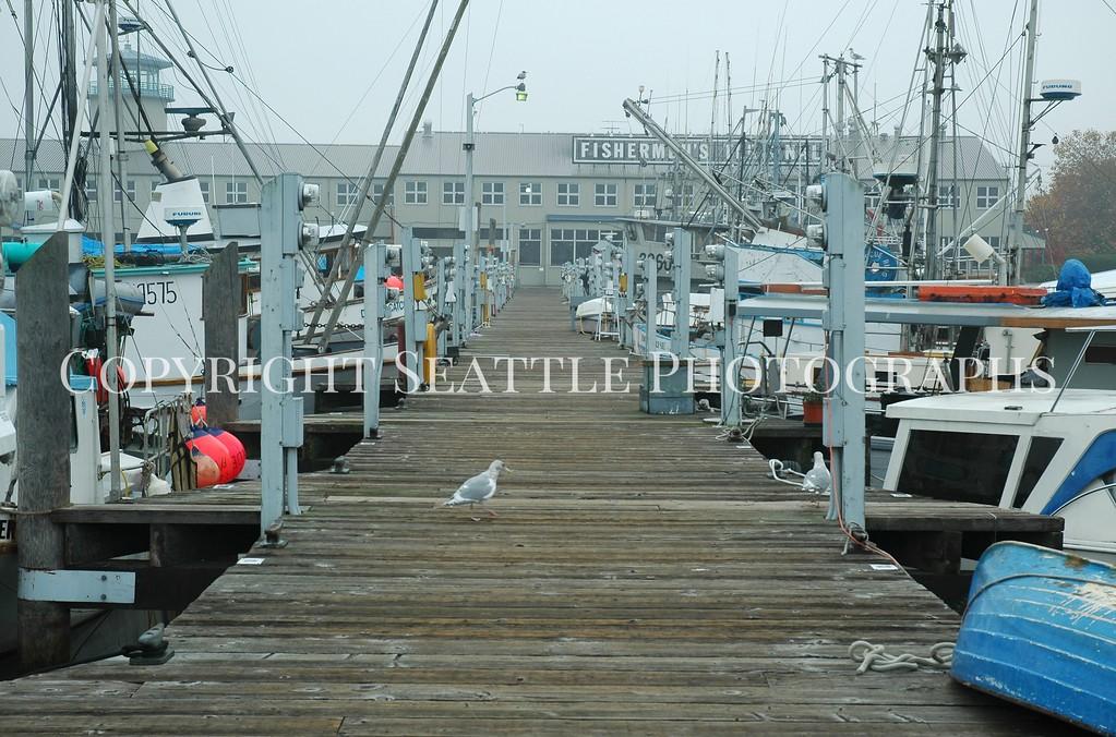 Fishermens Terminal 2