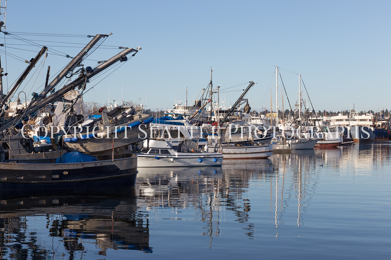 Fishermens Terminal 42