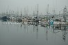 Fishermens Terminal 4