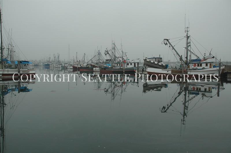 Fishermens Terminal 3