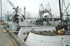 Fishermens Terminal 26