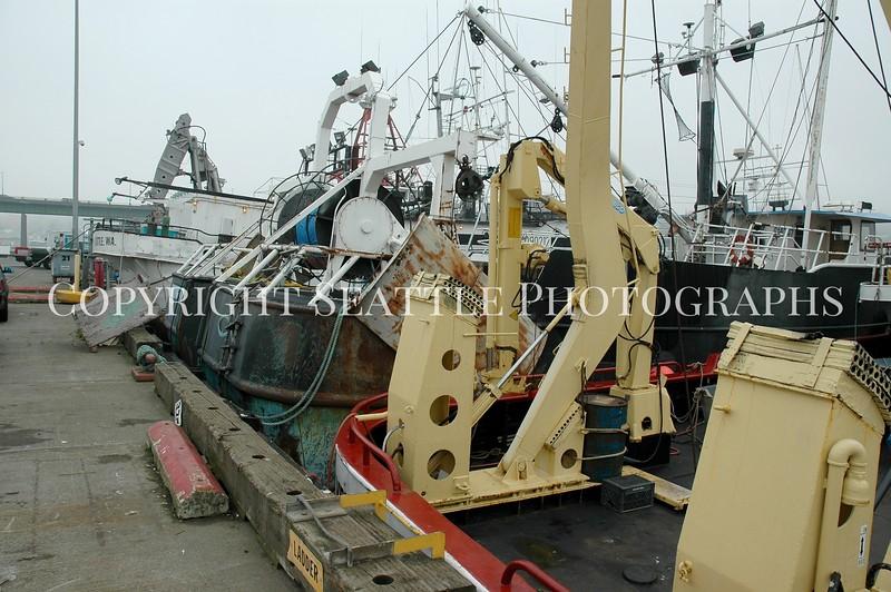 Fishermens Terminal 22