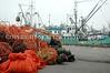 Fishermens Terminal Nets 31