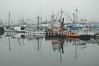 Fishermens Terminal 7