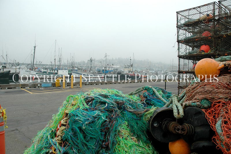 Fishermens Terminal Nets 14