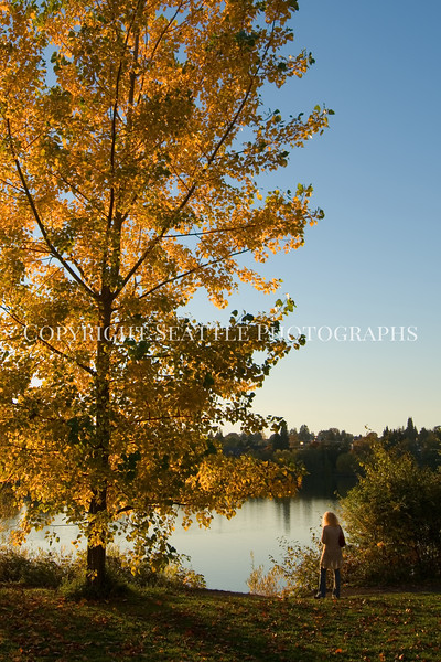 Green Lake Park Autumn 70