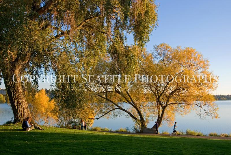 Green Lake Park Autumn 65
