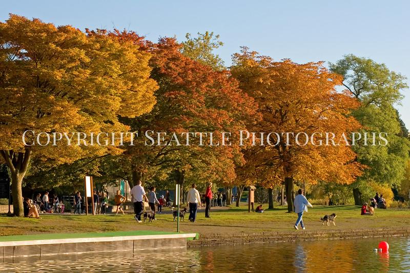 Green Lake Park Autumn 48