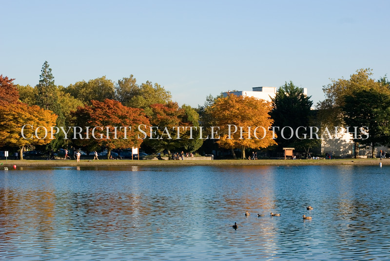 Green Lake Park Autumn 33
