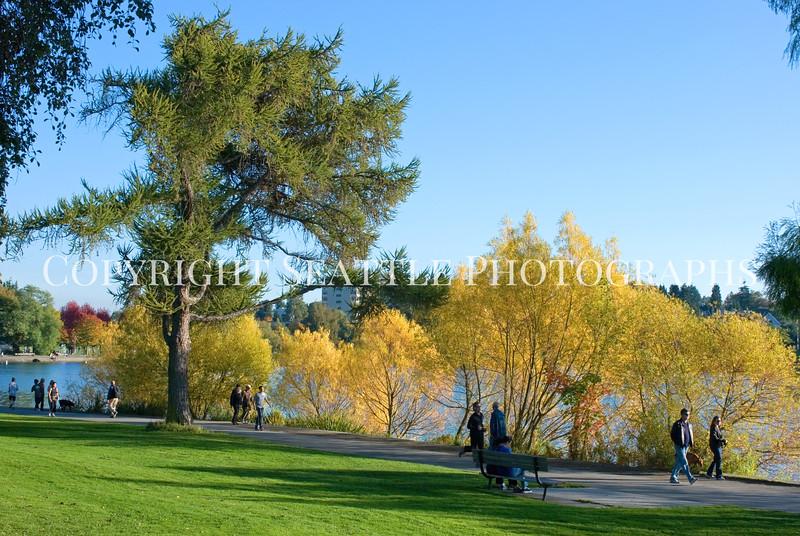 Green Lake Park Autumn 30