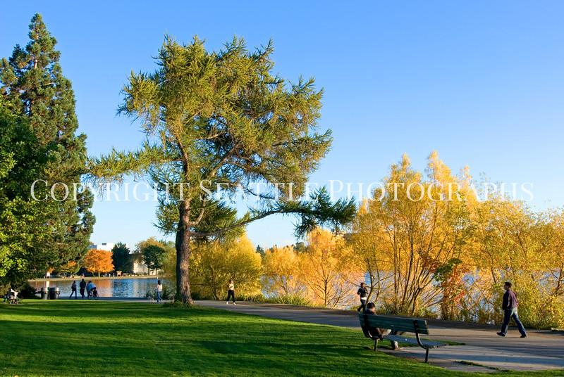 Green Lake Park Autumn 56
