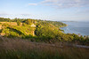 Discovery Park Views 100
