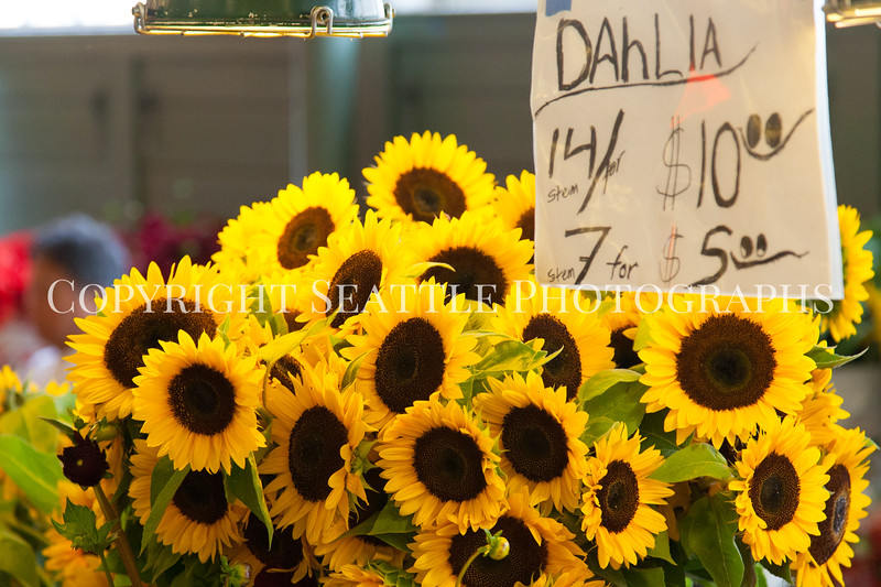 Pike Place Market Flowers 111