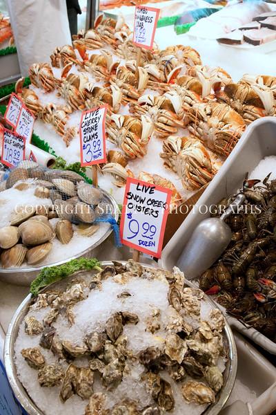 Pike Place Market Fish 103