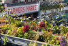 Pike Place Market 128