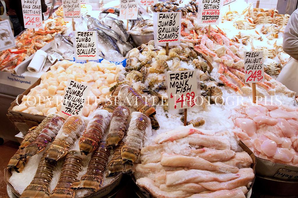 Pike Place Market Fish 102