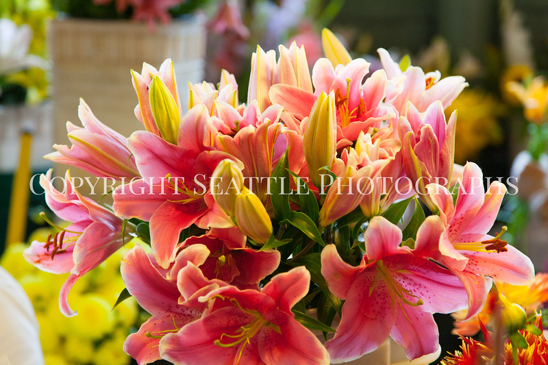 Pike Place Market Flowers 110