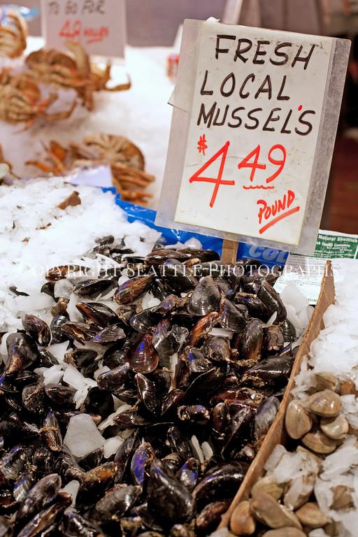 Pike Place Market Fish 108