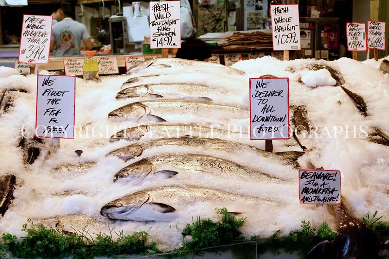 Pike Place Market Fish 105