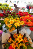 Pike Place Market Flowers 114