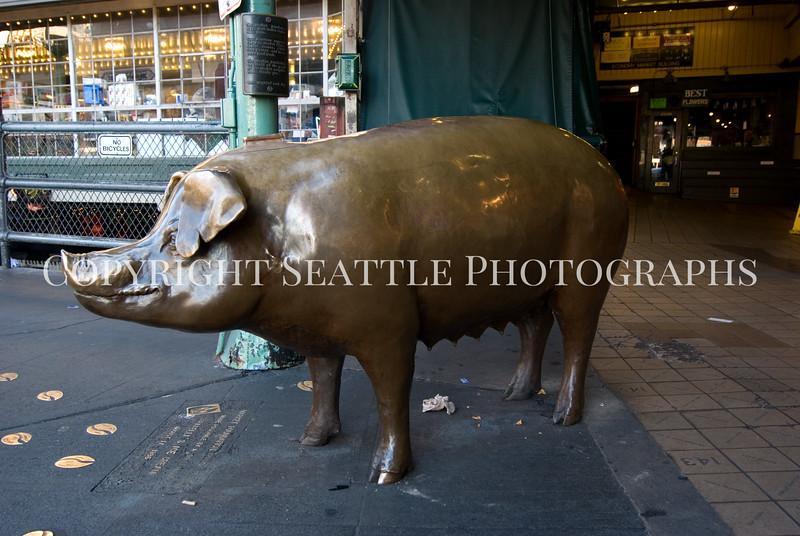 Rachel the Brass Pig 103
