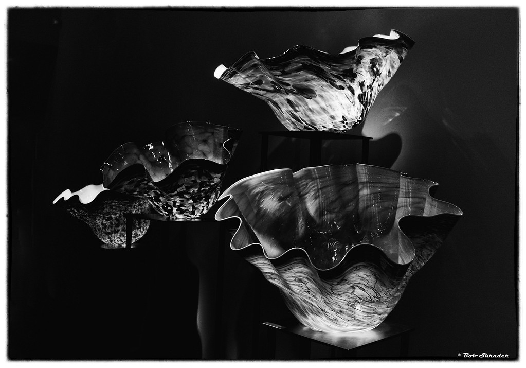 Chihuly Glass in B&W