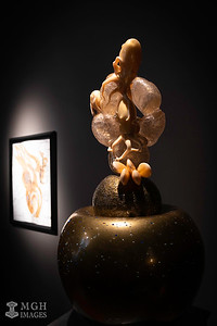 Chihuly_Glass-6