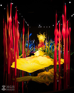 Chihuly_Glass-12