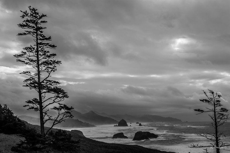 Oregon Coast Winter 1