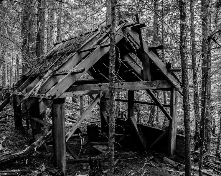 Defunct Cabin