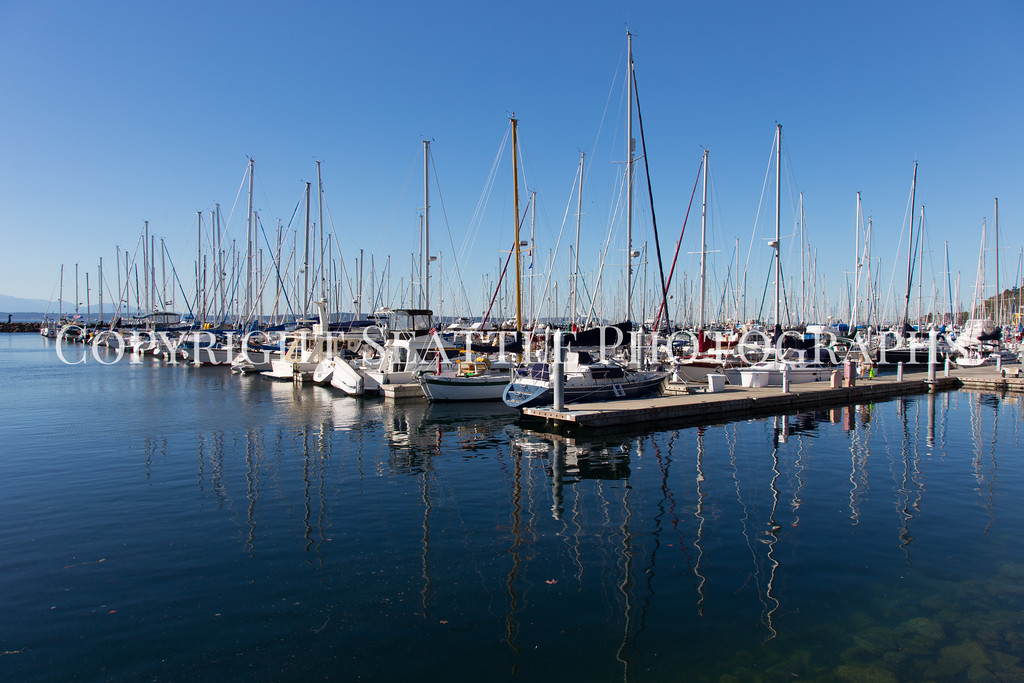 Shilshole Marina 25