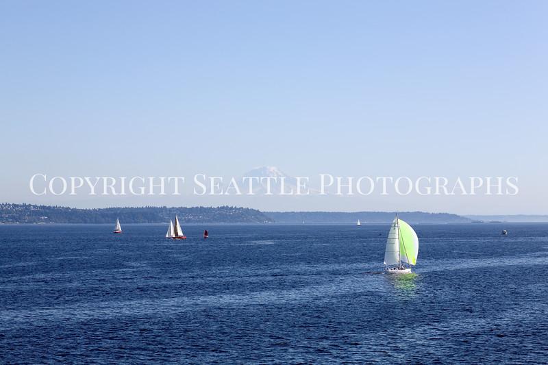 Sailboats 115