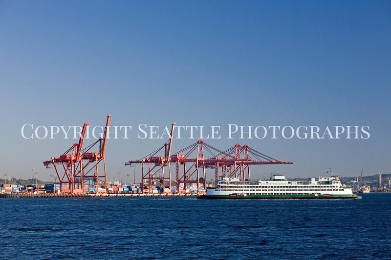 Seattle Waterfront Downtown 127