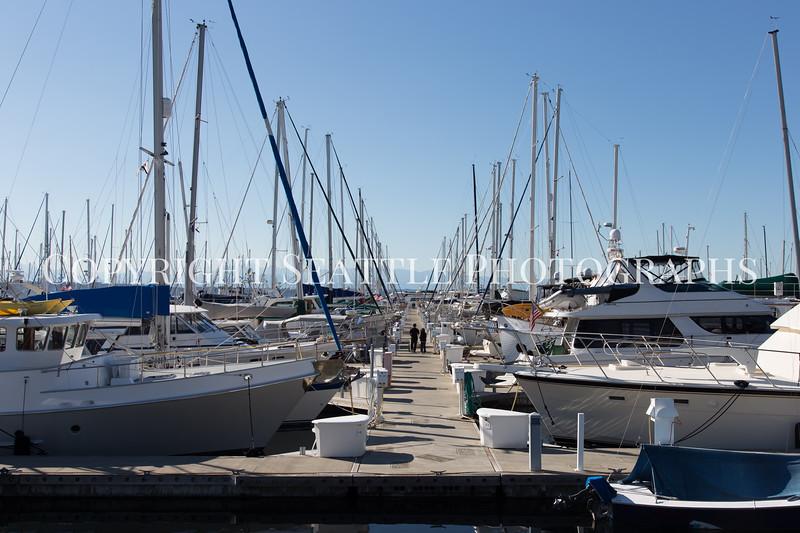 Shilshole Marina 15
