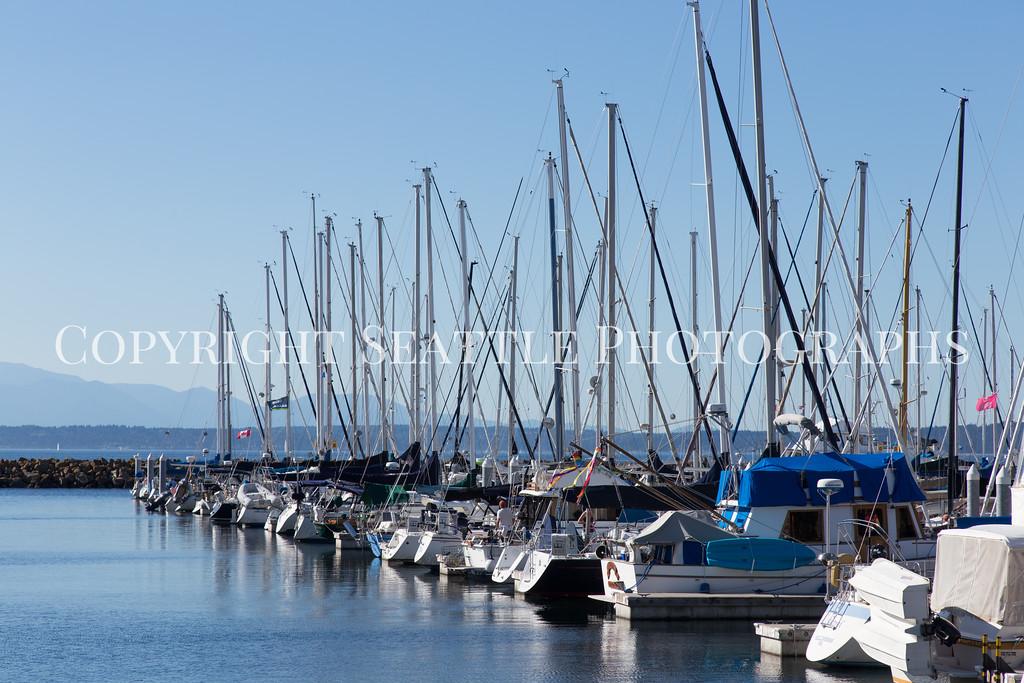 Shilshole Marina 29