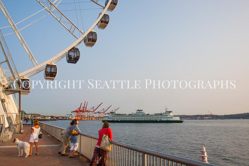 Seattle Waterfront Downtown 205