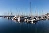 Shilshole Marina 28