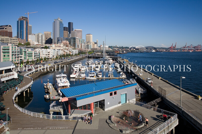 Seattle Waterfront Bell Street Pier 104