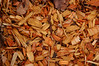 Wood chips in a garden path.