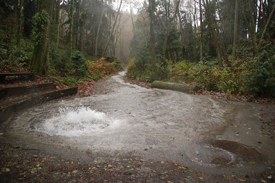 Carkeek Park 12-3-07 (storm)