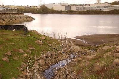 Duwamish Waterway - Turning Basin #3