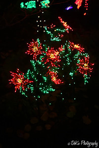 XmasLights(web)_0031