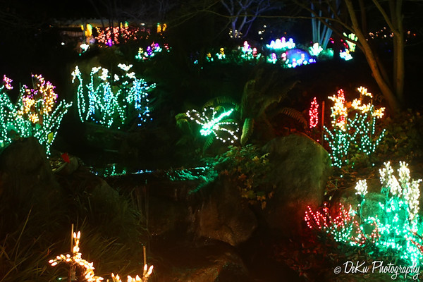 XmasLights(web)_0014