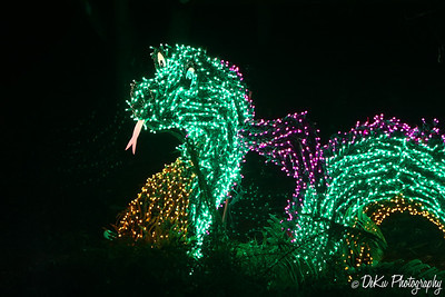 XmasLights(web)_0036